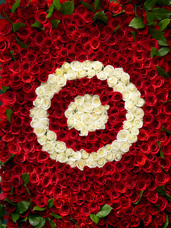 Props – Target Roses